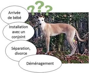 changement arrivée de bébé, installation avec conjoint, séparation, divorce, déménagement